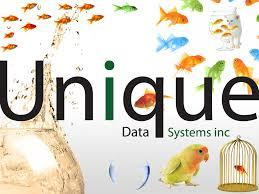 Unique Data Systems Inc.